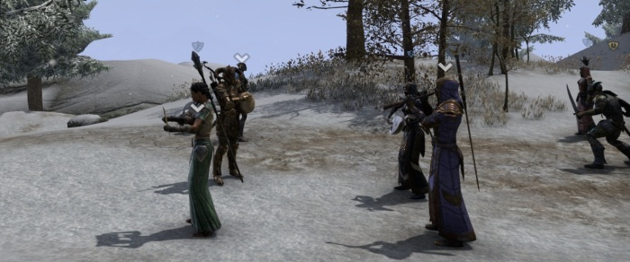 This merry collection of collaborating carebears took part in a cross-alliance effort to introduce the PvP disinclined to what Cyrodiil has to offer - besides musical companionship I mean. It was a great time.