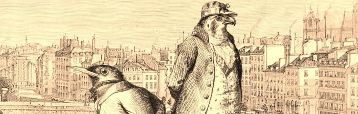 Aviary Attorney Banner